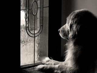 Waiting, waiting, waiting...